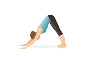 perro boca abajo yoga y suelo pelvico